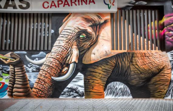elefante-mural-detalle