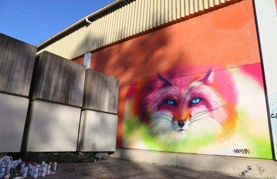 pintura-mural-zorro
